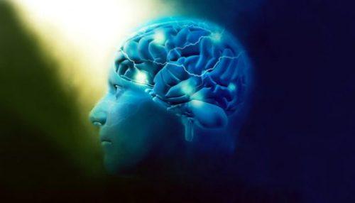 mozak-ilustracija