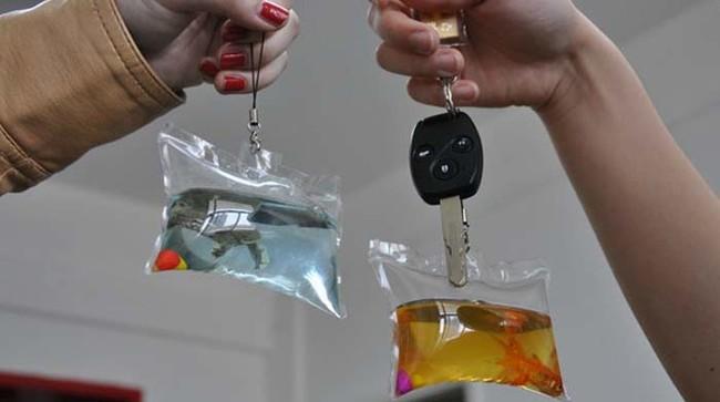 Privjesci za kljuceve sa zivotinjama
