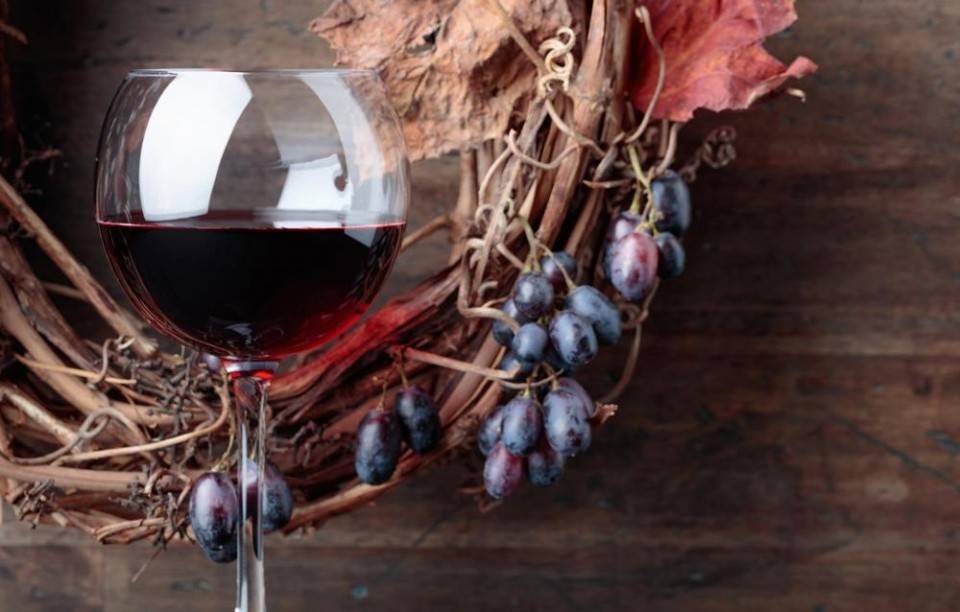 vino, grožđe